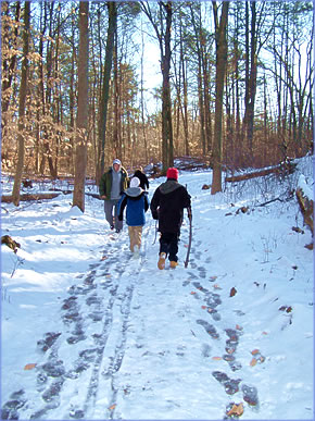 Winter walk at Astor Residential Treatment programs